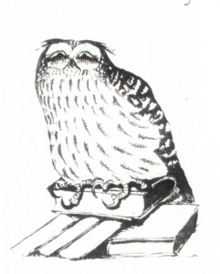 An owl. The 1900s. Ink on paper. Central State Archives of Literature and Art. Moscow.