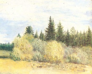 Volga landscape