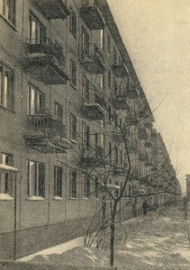 Houses in Malaya Okhta.