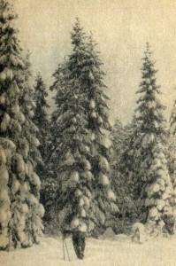 Karelian Isthmus.