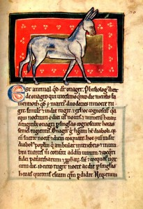 The Medieval Bestiary