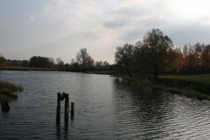 Pond Village