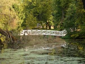 The bridge across the pond
