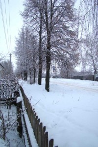 Village street in winter.