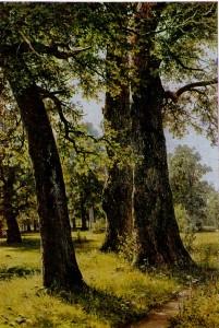 Ivan Shishkin (1832 - 1898) Oaks. 1887