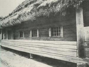 Hut in the village