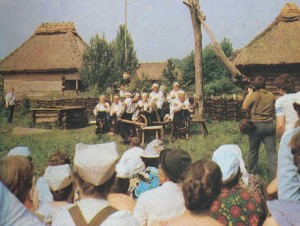 Playing member of the folk ensemble