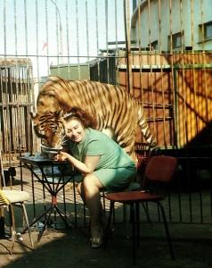 Tigerdompteuse Margarita Nasarowa im Zirkus von Nischni Nowgorod