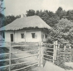 Hut in the village of Chervonopopovka