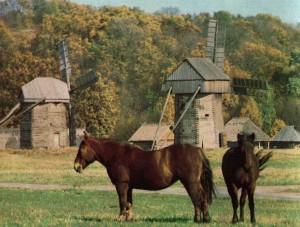 Windmills Polessye