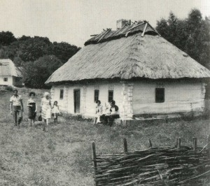 Hut in the village of Luga Winitzki area. 19th century.