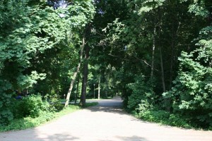 park Kulibina