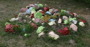 Colored stones add variety to the landscape of children's camp.