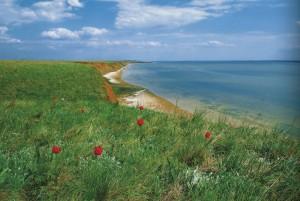 """Das hohe Ufer des Manytsch-Gudilo-Sees. Das Staatliche Naturschutzgebiet """"Rostowskij"""""""