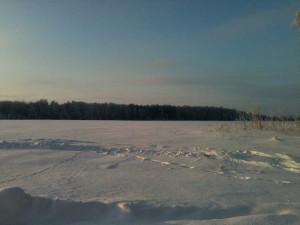 A snowy