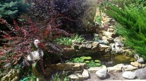 look good in the garden.