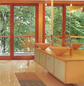 Large glass Windows