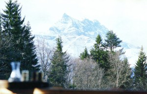 from the Chalet.