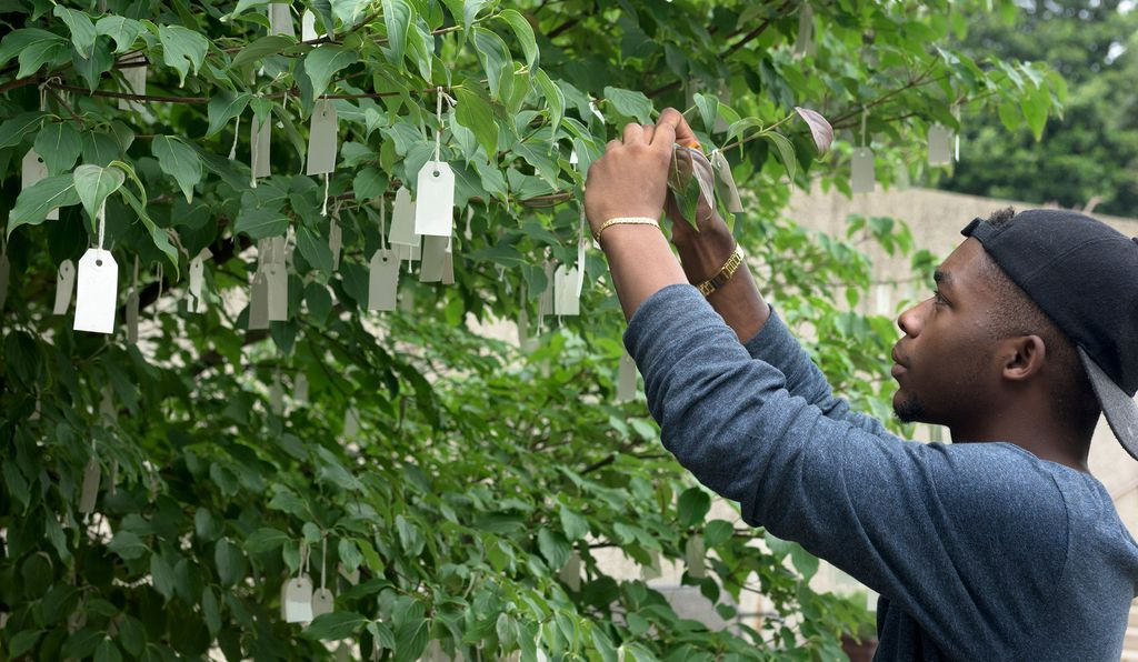 <em>Wish Tree for Washington, D.C.</em> is a dogwood in the sculpture garden onto which visitors tie thousands of written wishes annually to its branches.